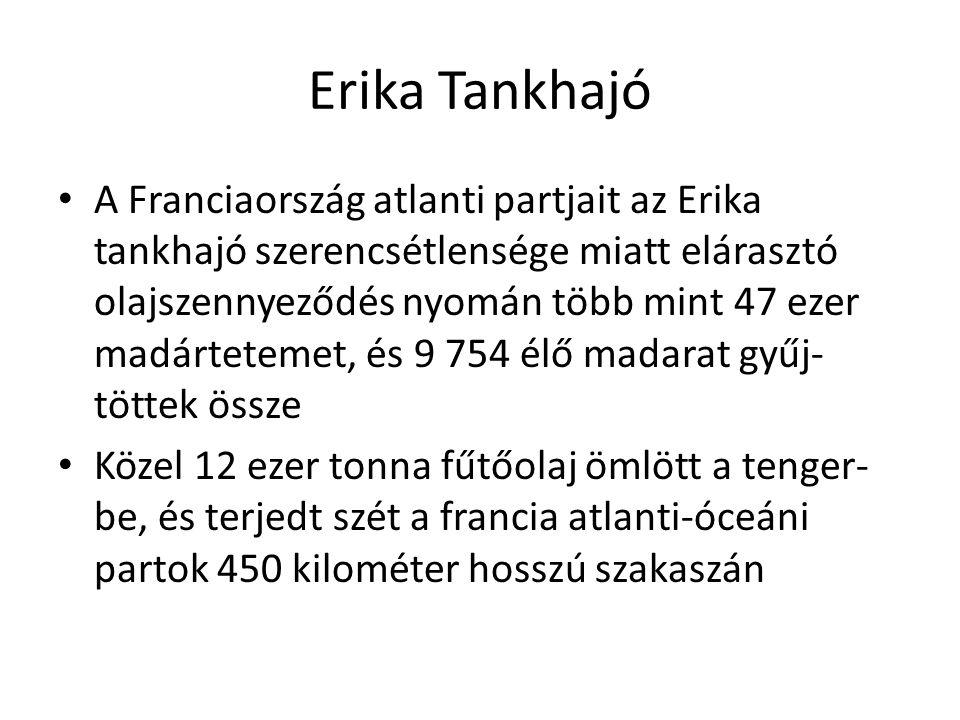 Erika Tankhajó A Franciaország atlanti partjait az Erika tankhajó szerencsétlensége miatt elárasztó olajszennyeződés nyomán több mint 47 ezer madártet