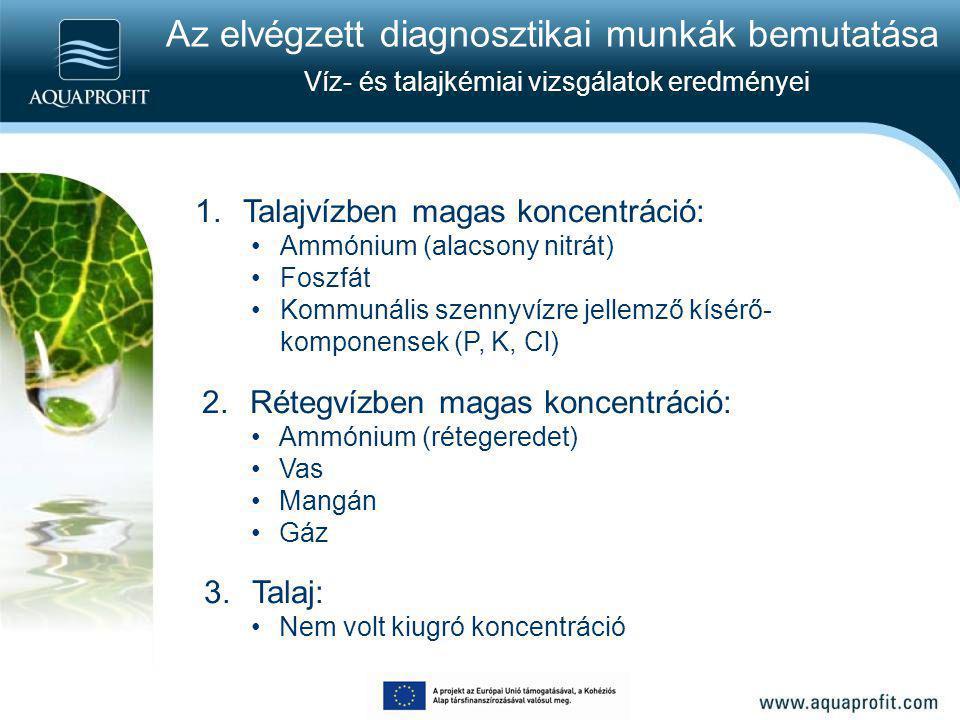 Az elvégzett diagnosztikai munkák bemutatása Víz- és talajkémiai vizsgálatok eredményei 1.Talajvízben magas koncentráció: Ammónium (alacsony nitrát) F