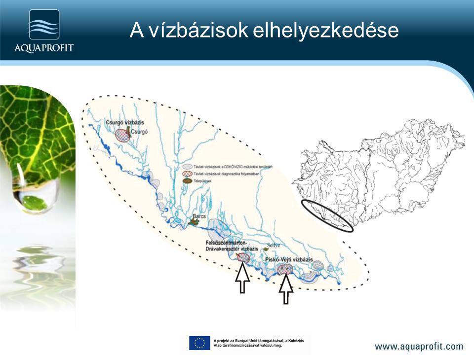 Tanulmányi terület földtani bemutatása Dráva medence A vízbeszerzés szempontjából fontos: holocén-pleisztocén folyóvízi összlet Legfelső 100 m Magyarország edett földtani térképének (1 : 100.000) kivágata (Síkhegyi, 2005).