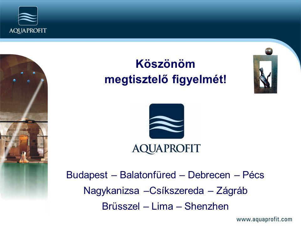 Köszönöm megtisztelő figyelmét! Budapest – Balatonfüred – Debrecen – Pécs Nagykanizsa –Csíkszereda – Zágráb Brüsszel – Lima – Shenzhen