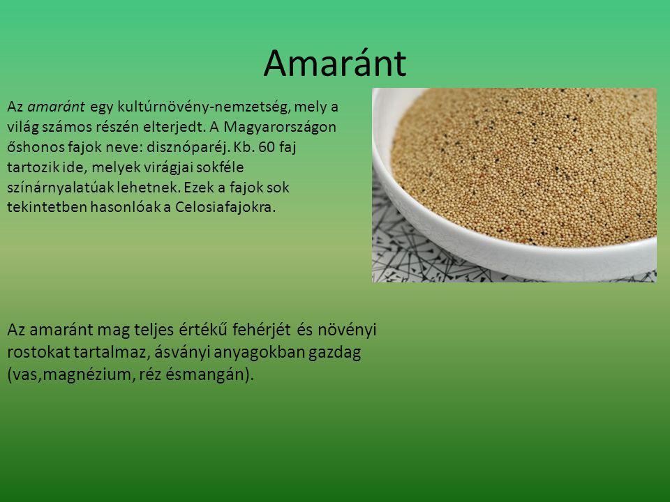 Amaránt Az amaránt egy kultúrnövény-nemzetség, mely a világ számos részén elterjedt.