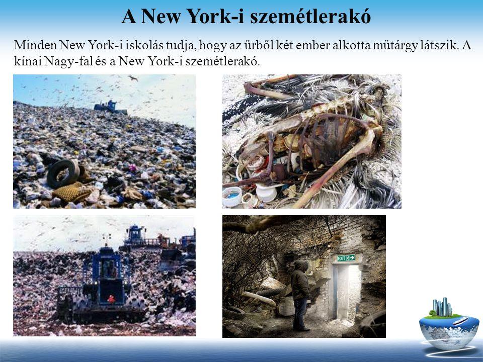 A New York-i szemétlerakó Minden New York-i iskolás tudja, hogy az űrből két ember alkotta műtárgy látszik. A kínai Nagy-fal és a New York-i szemétler