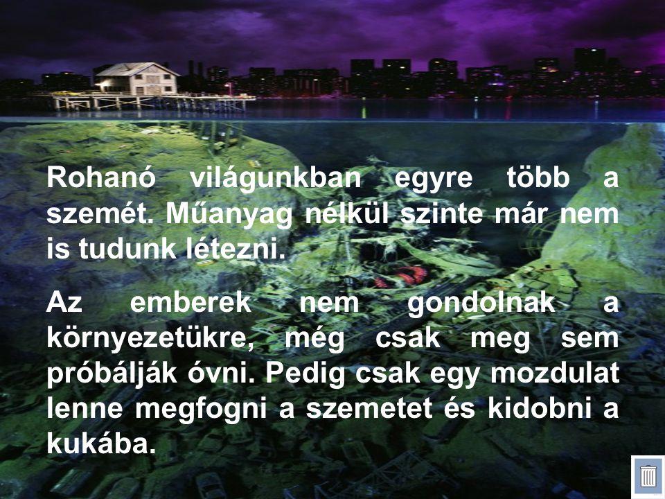 Források: kwm.hu, Pinterest.com,hatterkepek.hu, Wikipedia
