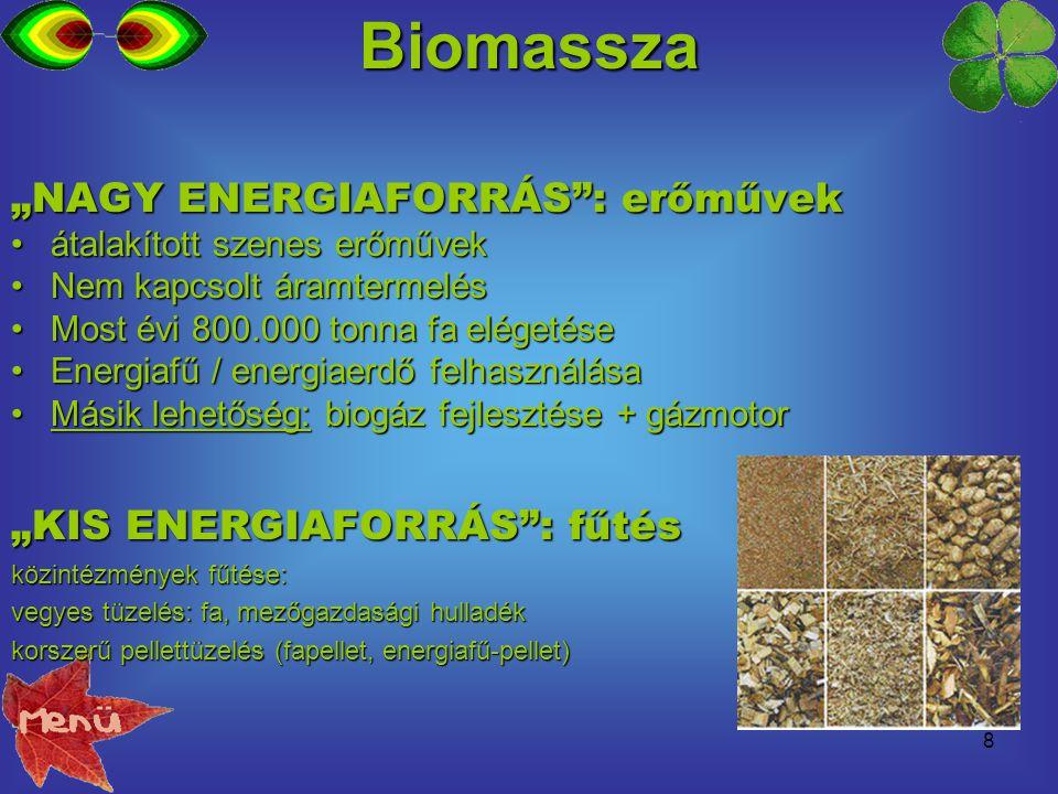 """8 """"NAGY ENERGIAFORRÁS"""": erőművek átalakított szenes erőművekátalakított szenes erőművek Nem kapcsolt áramtermelésNem kapcsolt áramtermelés Most évi 80"""