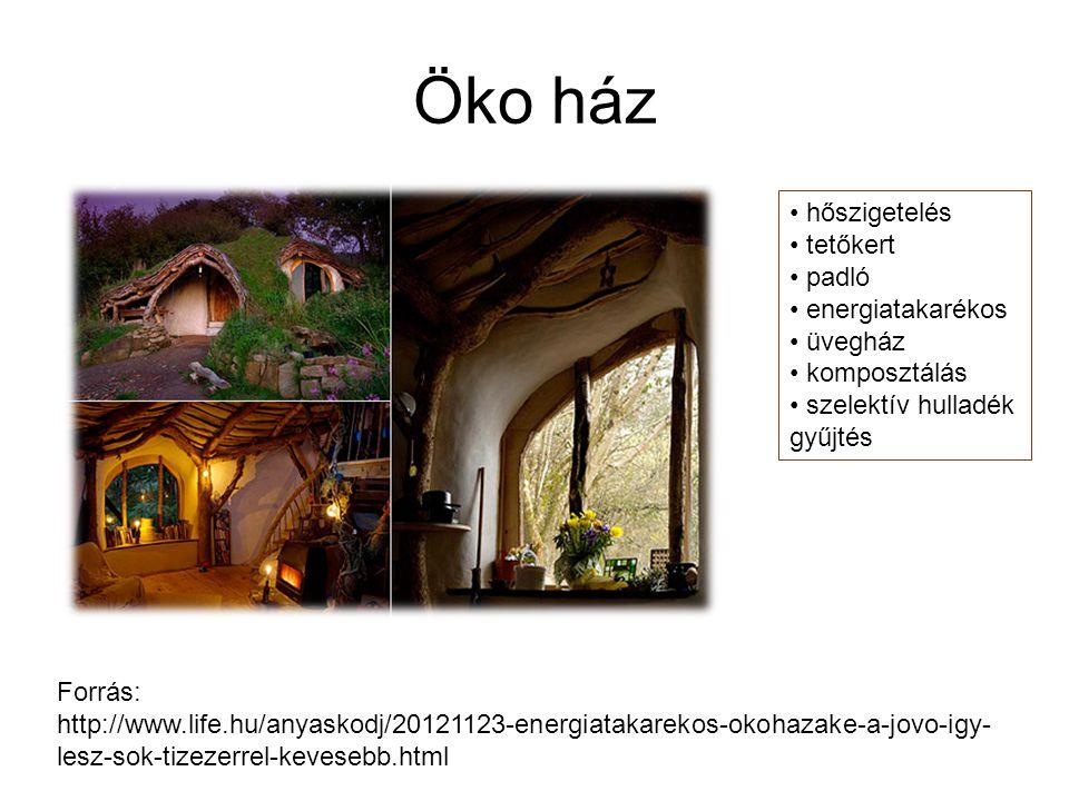 Öko ház Forrás: http://www.life.hu/anyaskodj/20121123-energiatakarekos-okohazake-a-jovo-igy- lesz-sok-tizezerrel-kevesebb.html hőszigetelés tetőkert p