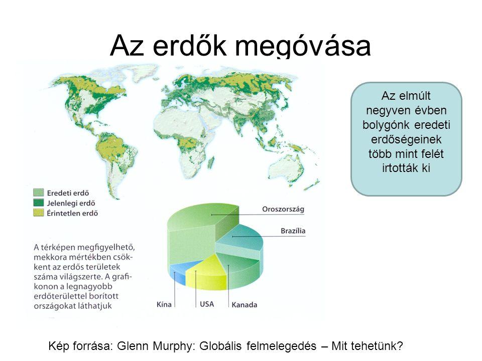 Az erdők megóvása Kép forrása: Glenn Murphy: Globális felmelegedés – Mit tehetünk? Az elmúlt negyven évben bolygónk eredeti erdőségeinek több mint fel