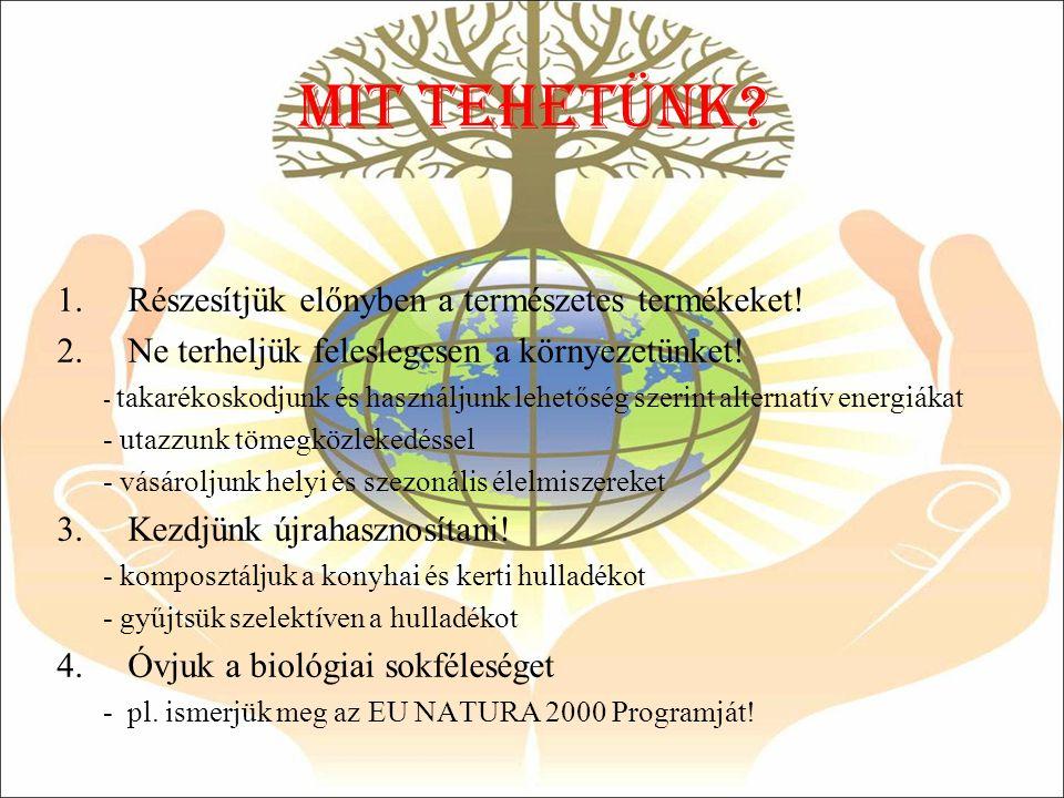 Mit tehetÜNK? 1.Részesítjük előnyben a természetes termékeket! 2.Ne terheljük feleslegesen a környezetünket! - takarékoskodjunk és használjunk lehetős