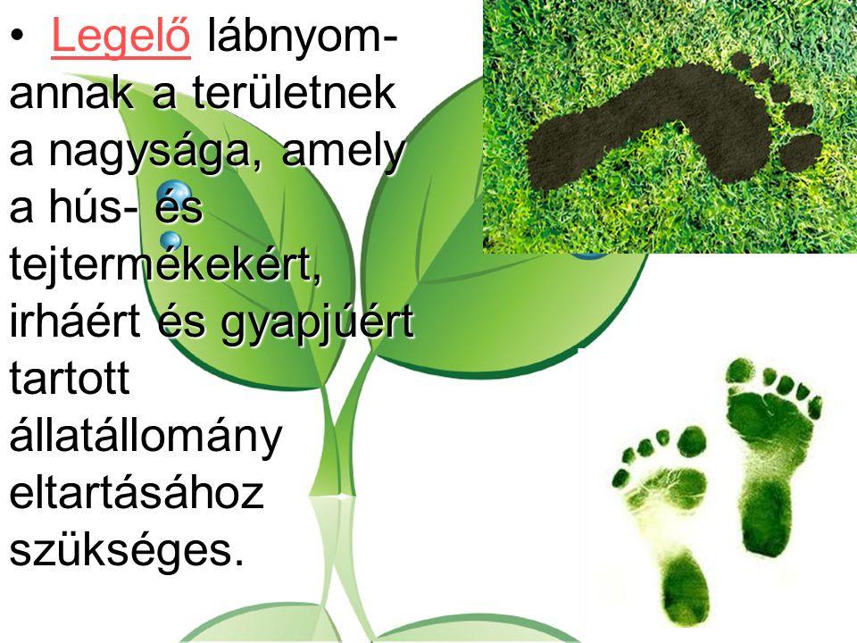 Legelő lábnyom- annak a területnek a nagysága, amely a hús- és tejtermékekért, irháért és gyapjúért tartott állatállomány eltartásához szükséges.Legel