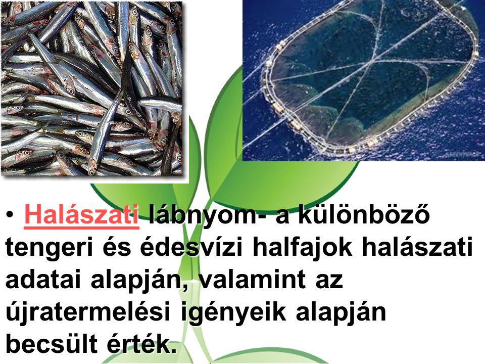 Halászati lábnyom- a különböző tengeri és édesvízi halfajok halászati adatai alapján, valamint az újratermelési igényeik alapján becsült érték.Halásza