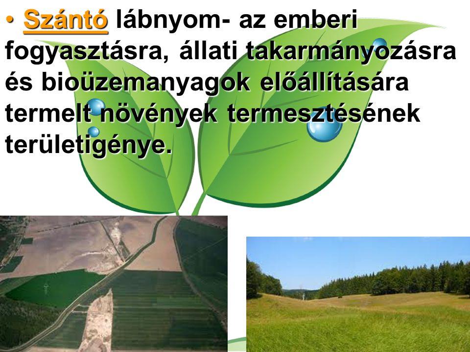 Szántó lábnyom- az emberi fogyasztásra, állati takarmányozásra és bioüzemanyagok előállítására termelt növények termesztésének területigénye.Szántó lá