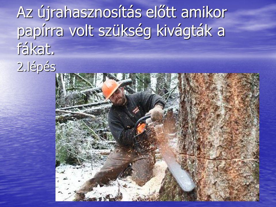 Az újrahasznosítás előtt amikor papírra volt szükség kivágták a fákat. 2.lépés
