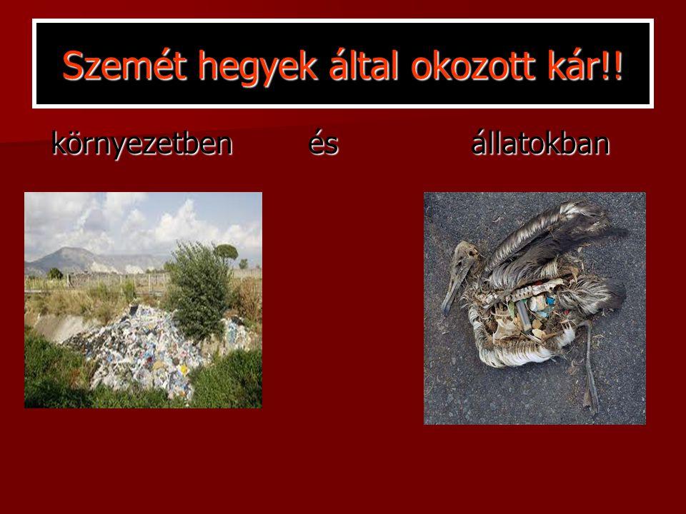 Szemét hegyek által okozott kár!! környezetben és állatokban környezetben és állatokban