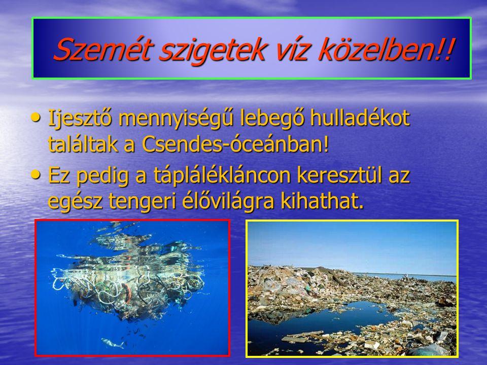 Szemét szigetek víz közelben!.Ijesztő mennyiségű lebegő hulladékot találtak a Csendes-óceánban.