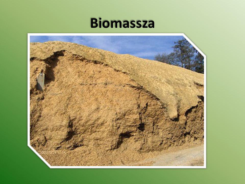 Biomassza Biomassza
