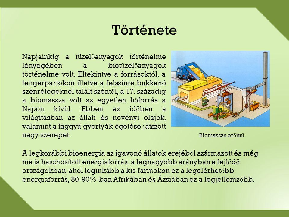 Biomassza Mi a biomassza.