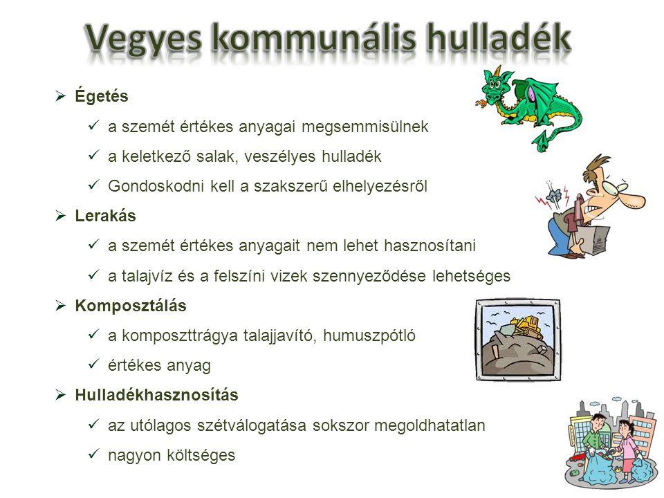  Égetés a szemét értékes anyagai megsemmisülnek a keletkező salak, veszélyes hulladék Gondoskodni kell a szakszerű elhelyezésről  Lerakás a szemét é