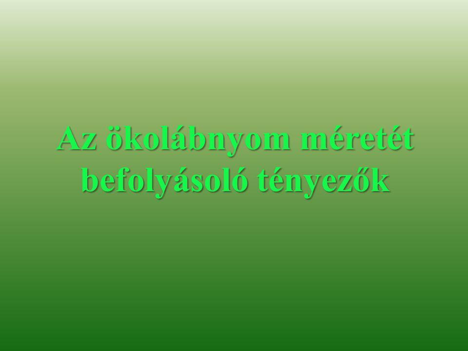 Források Szöveg: http://www.fna.hu/mittehetsz/okolabnyom http://www.kothalo.hu/labnyom/ Képek: http://www.cgpartners.hu http://www.alternativenergia.hu/tag/okologiai-labnyom/ http://www.gyulaihirlap.hu http://www.gyoriotthon.hu http://www.panoramio.com http://www.mommo.hu http://www.nanopor.hu http://www.elofolyoirat.blogspot.hu/2009/05/ http://www.hazepites.eliveport.com http://www.obsdemeentglimmen.nl http://www.keptaram.hu http://www.m3plaza.hu http://napkollektorrendszer.hu http://sean.wordpressors.com http://www.digitalversus.com http://www.penzmegtakaritas.hu http://www.netambulancia.hu http://www.alternativenergia.hu http://www.marosvasarhelyiradio.ro http://www.koos.hu http://www.foodandwine.hu http://www.szerezni.blog.hu http://www.grand-tours.hu http://www.welovebudapest.com http://www.istenbizony.hu http://www.autogaleria.hu http://www.meetincopenhagen.com http://www.commons.wikimedia.org http://www.photosofcar.com http://www.extraverz.hu http://www.climatechange.thinkaboutit.eu http://www.painoffice.wordpress.com