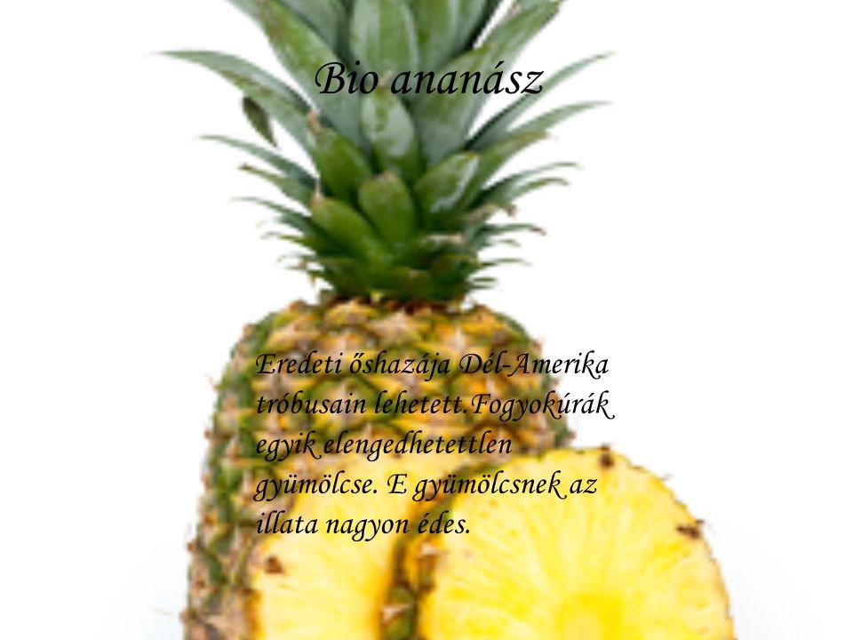 Bio ananász Eredeti őshazája Dél-Amerika tróbusain lehetett.Fogyokúrák egyik elengedhetettlen gyümölcse. E gyümölcsnek az illata nagyon édes.
