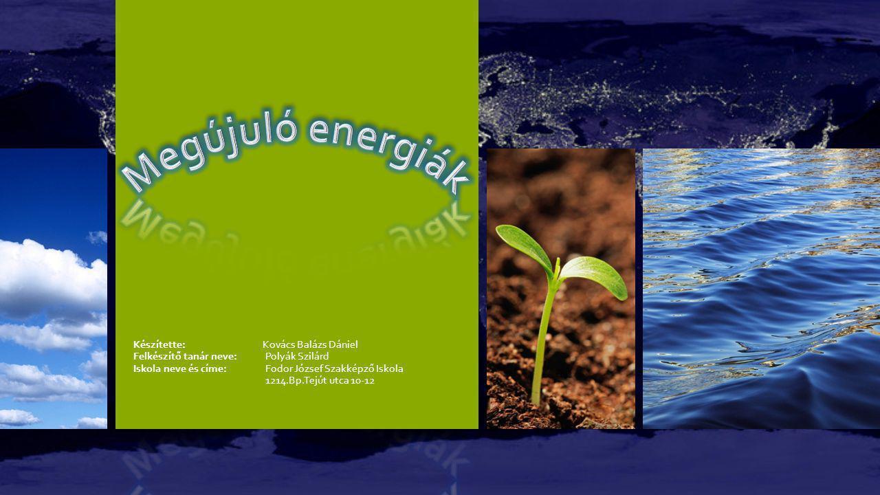 Biomassza A biomassza kifejezés alatt tágabb értelemben a Földön lévő összes élő tömeget értjük.