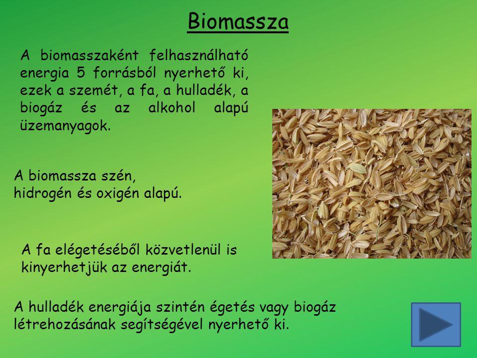 Biomassza A biomasszaként felhasználható energia 5 forrásból nyerhető ki, ezek a szemét, a fa, a hulladék, a biogáz és az alkohol alapú üzemanyagok. A