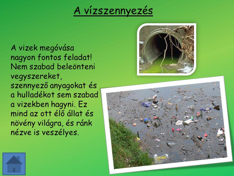 A vízszennyezés A vizek megóvása nagyon fontos feladat! Nem szabad beleönteni vegyszereket, szennyező anyagokat és a hulladékot sem szabad a vizekben