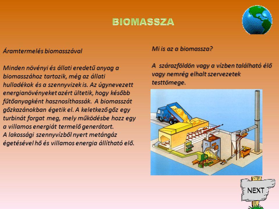 Mi is az a biomassza.
