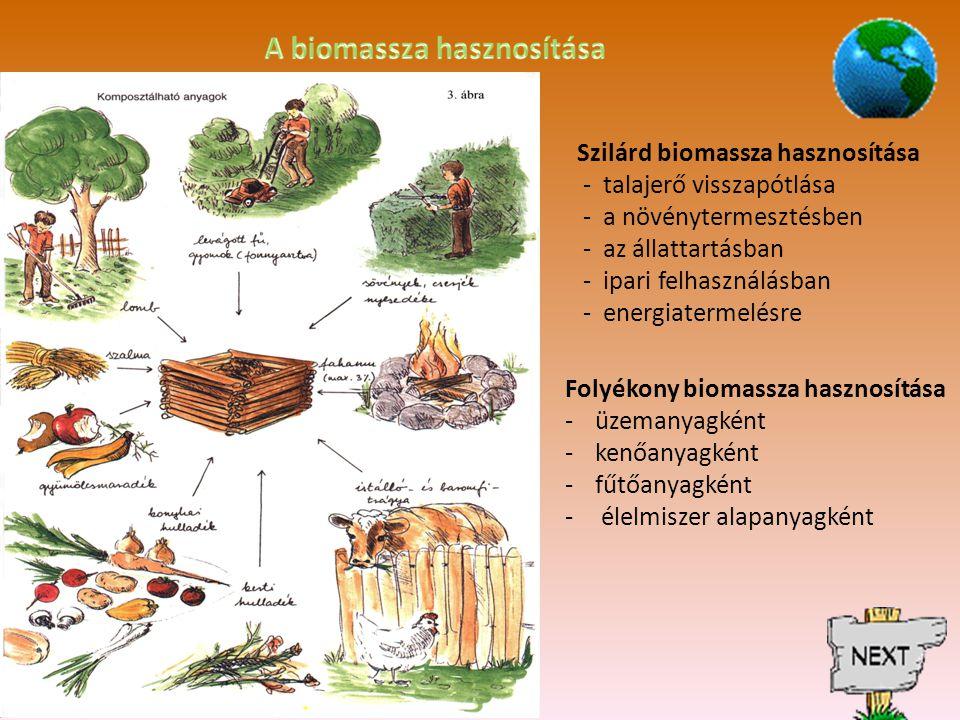 Szilárd biomassza hasznosítása - talajerő visszapótlása - a növénytermesztésben - az állattartásban - ipari felhasználásban - energiatermelésre Folyékony biomassza hasznosítása -üzemanyagként -kenőanyagként -fűtőanyagként - élelmiszer alapanyagként
