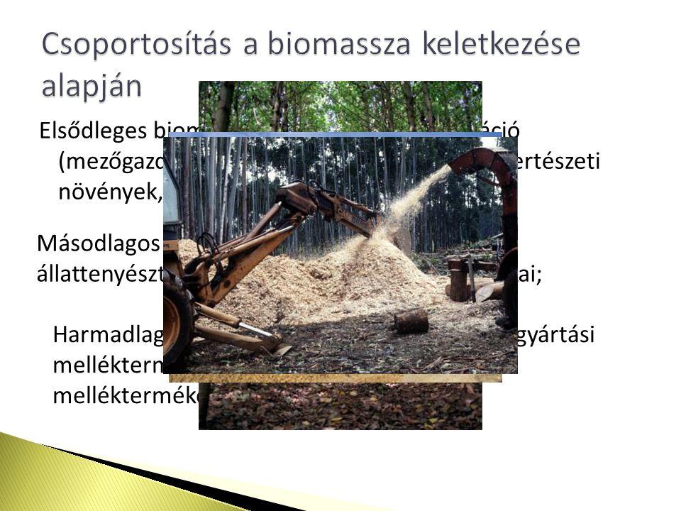 Elsődleges biomassza: a természetes vegetáció (mezőgazdsági növények, erdő, rét, legelő, kertészeti növények, a vízben élő növények), Másodlagos biomassza: állatvilág, illetve az állattenyésztés fő- és melléktermékei, hulladékai; Harmadlagos biomassza: a feldolgozó iparok gyártási mellékterméke, az emberi életműködés mellékterméke.