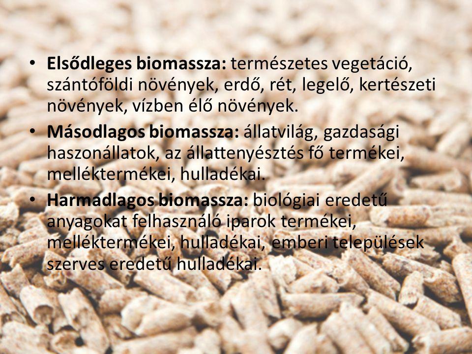 Elsődleges biomassza: természetes vegetáció, szántóföldi növények, erdő, rét, legelő, kertészeti növények, vízben élő növények. Másodlagos biomassza: