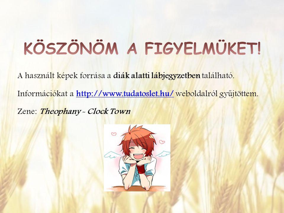 A használt képek forrása a diák alatti lábjegyzetben található. Információkat a http://www.tudatoslet.hu/ weboldalról gy ű jtöttem.http://www.tudatosl