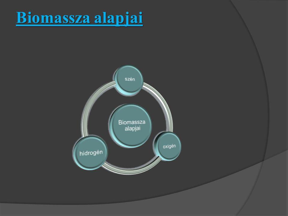 Biomassza alapjai