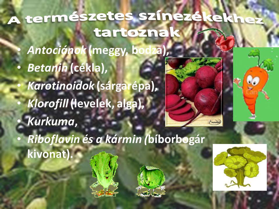 Antociánok (meggy, bodza), Betanin (cékla), Karotinoidok (sárgarépa), Klorofill (levelek, alga), Kurkuma, Riboflavin és a kármin (bíborbogár kivonat).