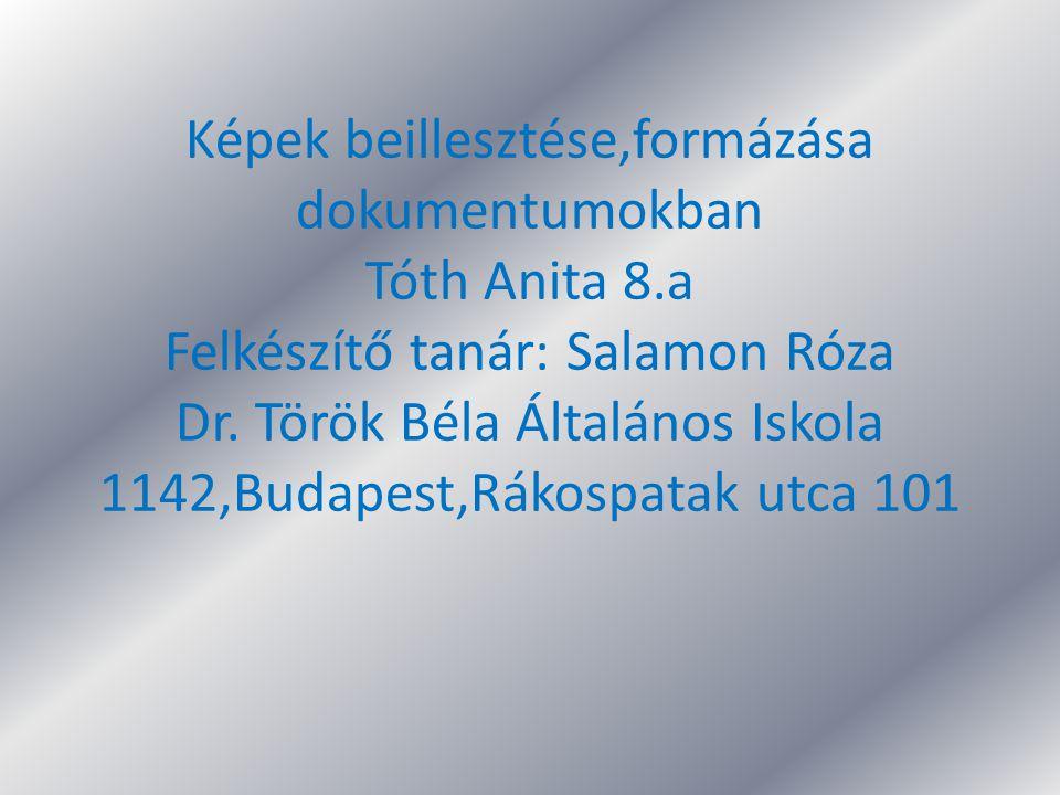 Képek beillesztése,formázása dokumentumokban Tóth Anita 8.a Felkészítő tanár: Salamon Róza Dr. Török Béla Általános Iskola 1142,Budapest,Rákospatak ut