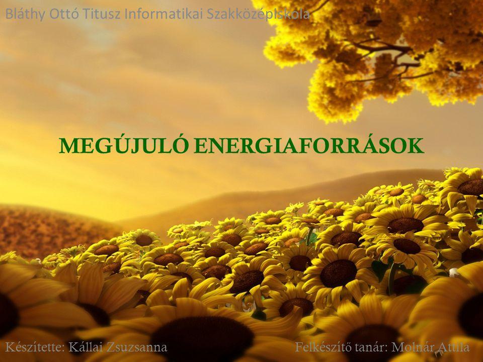 1)Mik lehetnek a megújuló energiaforrások kockázatai .
