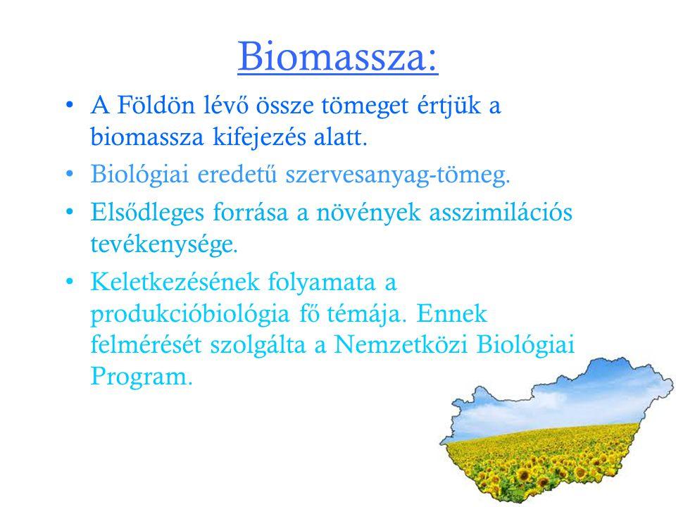 Biomassza: A Földön lév ő össze tömeget értjük a biomassza kifejezés alatt. Biológiai eredet ű szervesanyag-tömeg. Els ő dleges forrása a növények ass