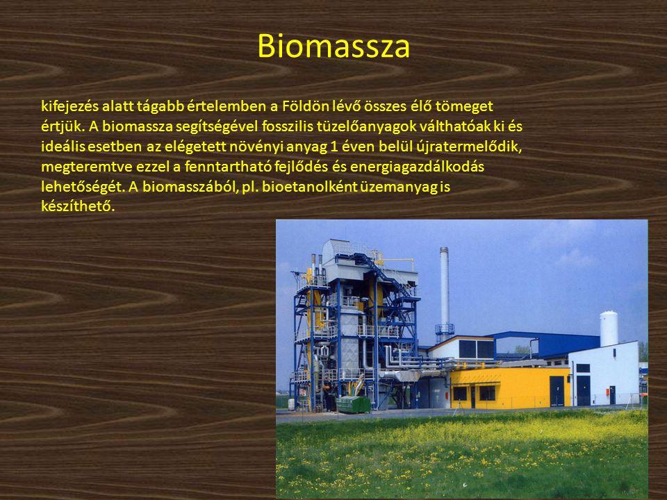 Biomassza kifejezés alatt tágabb értelemben a Földön lévő összes élő tömeget értjük. A biomassza segítségével fosszilis tüzelőanyagok válthatóak ki és