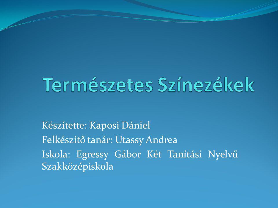 Készítette: Kaposi Dániel Felkészítő tanár: Utassy Andrea Iskola: Egressy Gábor Két Tanítási Nyelvű Szakközépiskola