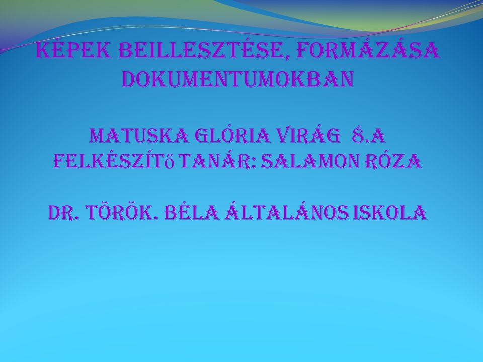 Képek beillesztése, formázása dokumentumokban Matuska Glória Virág 8.a Felkészít ő tanár: Salamon Róza Dr. Török. Béla Általános Iskola