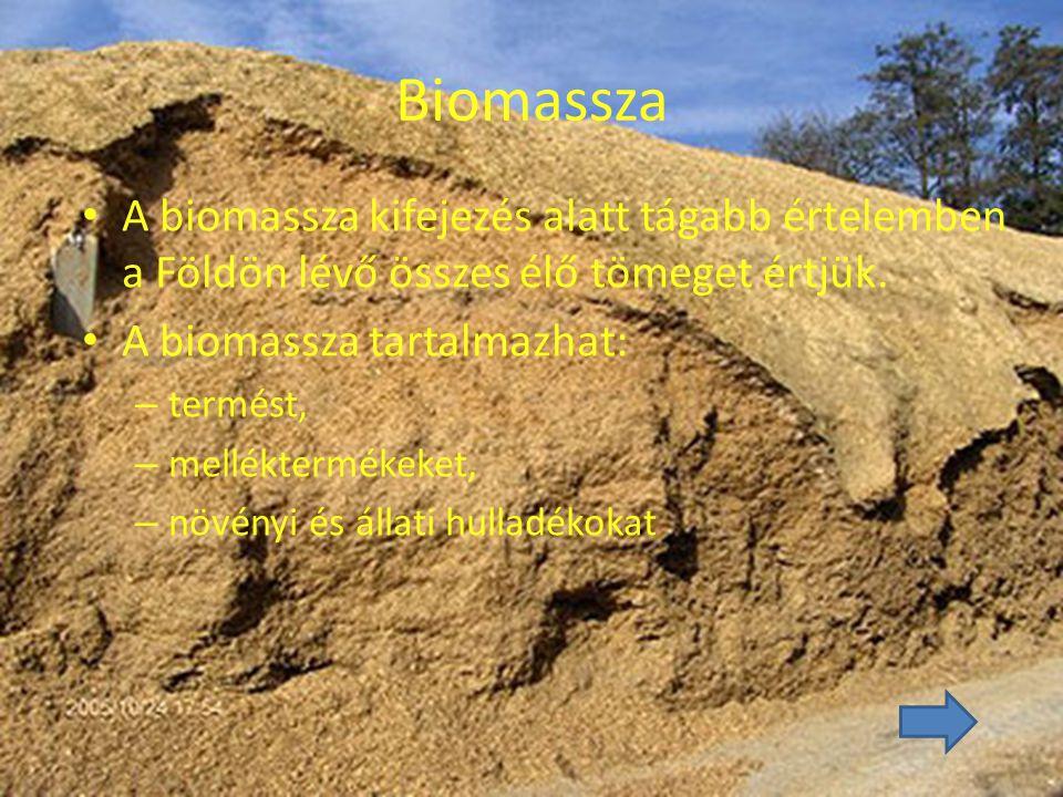 Biomassza A biomassza kifejezés alatt tágabb értelemben a Földön lévő összes élő tömeget értjük. A biomassza tartalmazhat: – termést, – melléktermékek