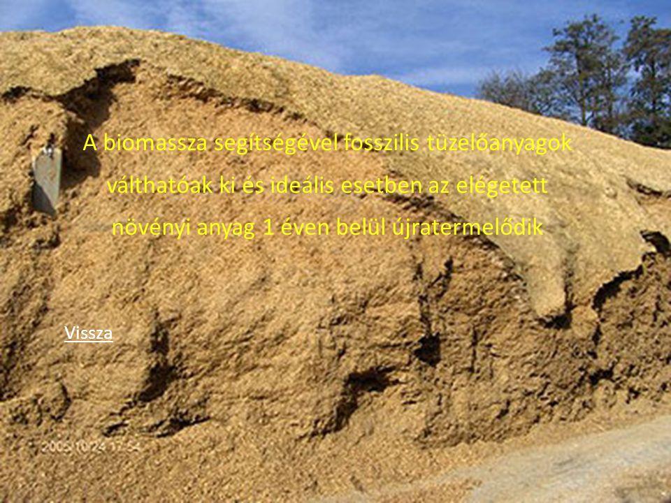 A biomassza segítségével fosszilis tüzelőanyagok válthatóak ki és ideális esetben az elégetett növényi anyag 1 éven belül újratermelődik Vissza