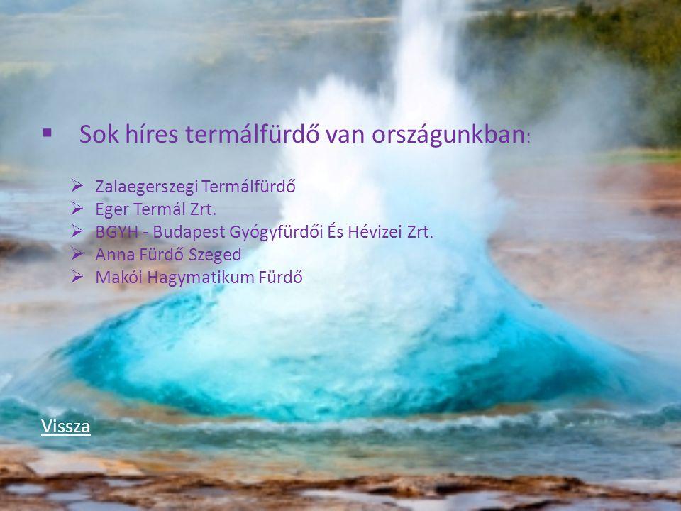 SSok híres termálfürdő van országunkban : ZZalaegerszegi Termálfürdő EEger Termál Zrt. BBGYH - Budapest Gyógyfürdői És Hévizei Zrt. AAnna Fü