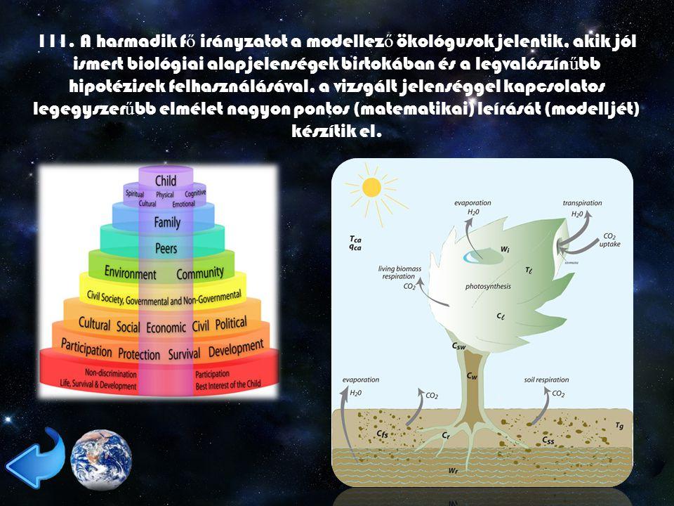 111. A harmadik f ő irányzatot a modellez ő ökológusok jelentik, akik jól ismert biológiai alapjelenségek birtokában és a legvalószín ű bb hipotézisek
