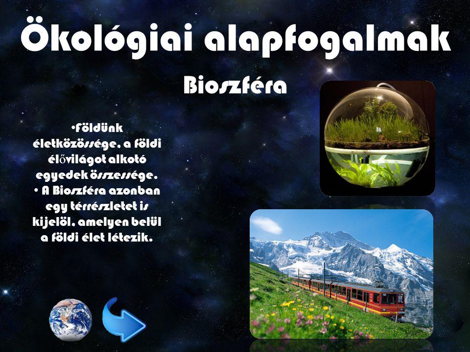Ökológiai alapfogalmak Bioszféra Földünk életközössége, a földi él ő világot alkotó egyedek összessége.