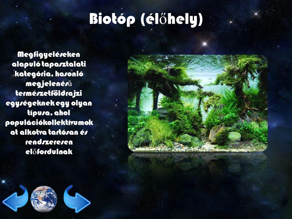 Biotóp (él ő hely) Megfigyeléseken alapuló tapasztalati kategória, hasonló megjelenés ű természetföldrajzi egységeknek egy olyan típusa, ahol populációkollektívumok at alkotva tartósan és rendszeresen el ő fordulnak