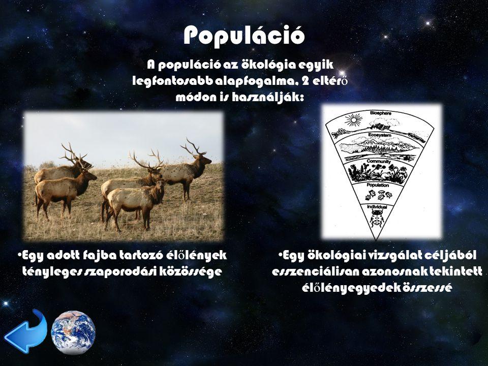 Populáció A populáció az ökológia egyik legfontosabb alapfogalma, 2 eltér ő módon is használják: Egy adott fajba tartozó él ő lények tényleges szaporodási közössége Egy ökológiai vizsgálat céljából esszenciálisan azonosnak tekintett él ő lényegyedek összessé