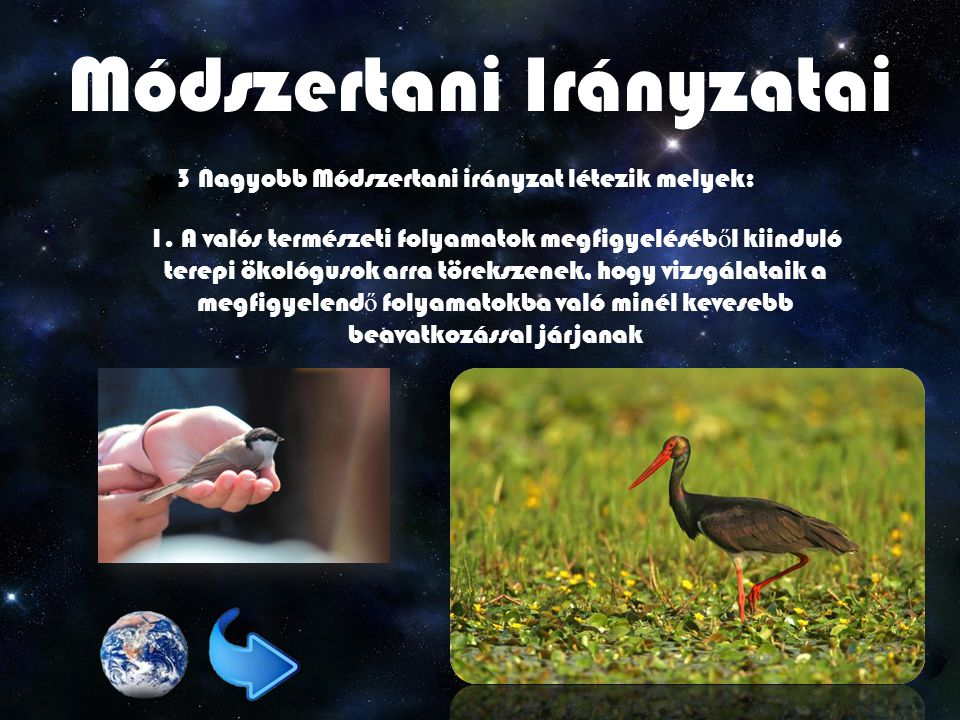 Módszertani Irányzatai 3 Nagyobb Módszertani irányzat létezik melyek: 1.