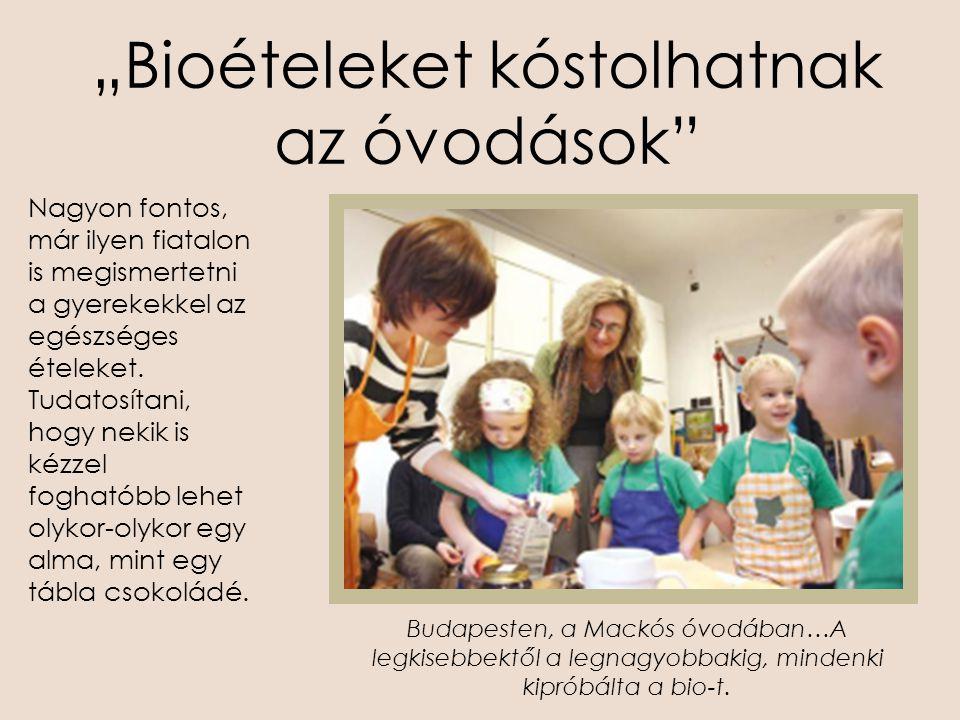"""""""Bioételeket kóstolhatnak az óvodások"""" Nagyon fontos, már ilyen fiatalon is megismertetni a gyerekekkel az egészséges ételeket. Tudatosítani, hogy nek"""