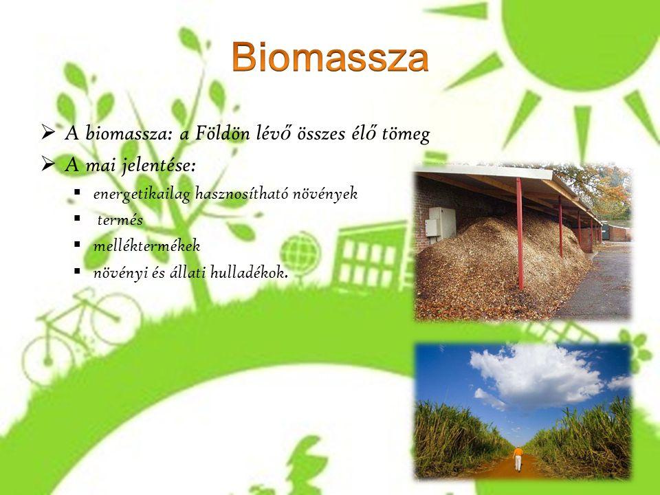  A biomassza: a Földön lév ő összes él ő tömeg  A mai jelentése:  energetikailag hasznosítható növények  termés  melléktermékek  növényi és álla