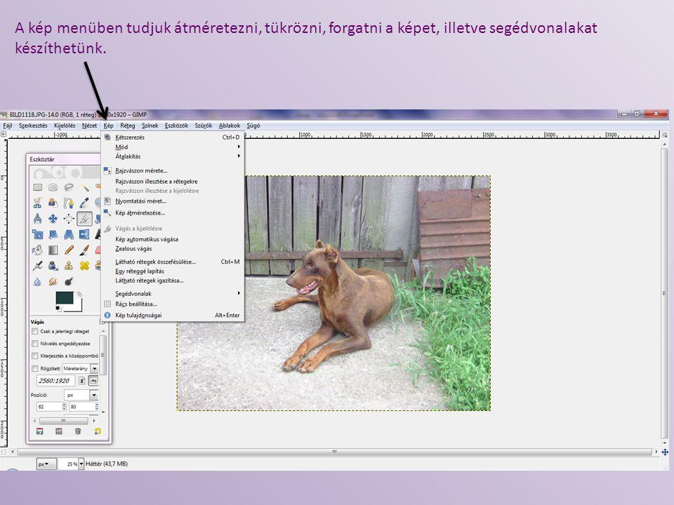 Az általam használt oldalak linkjei: http://www.lipsz.hu/tudasbazis/210-mit-jelent-a-nyilt-forraskod.html http://www.szoftverbazis.hu/szoftver/the-gimp-v2-66--magyar--GC5.html http://hu.wikipedia.org/wiki/GIMP