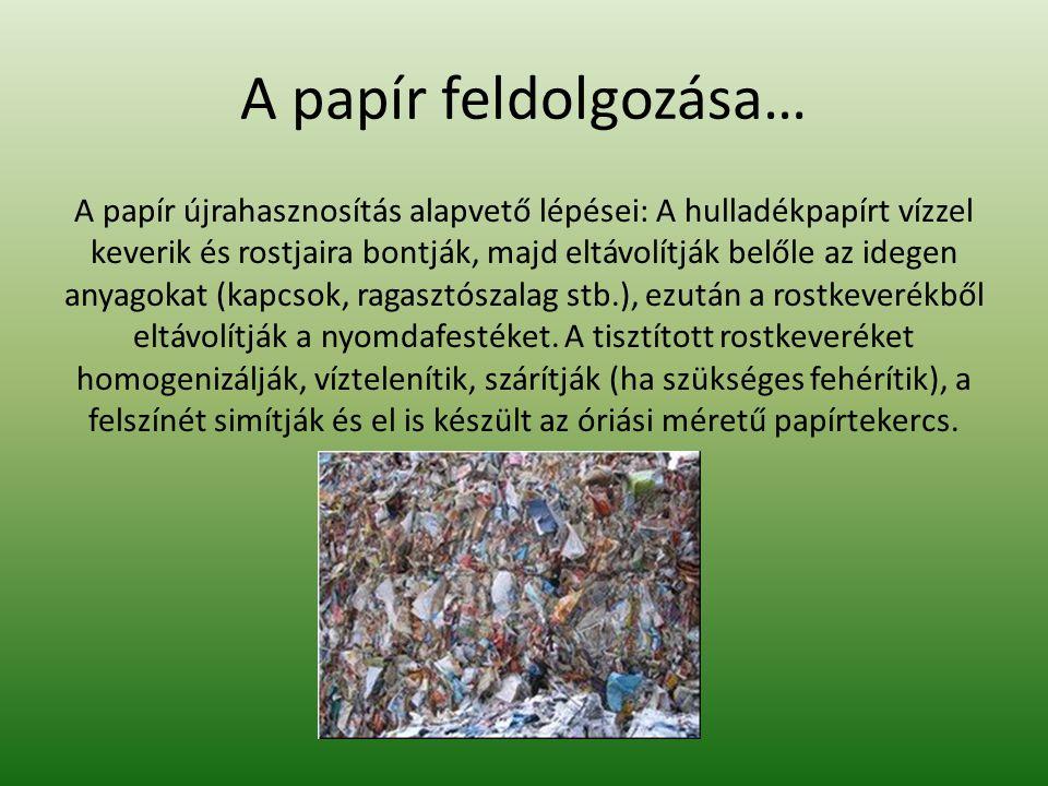 A papír feldolgozása… A papír újrahasznosítás alapvető lépései: A hulladékpapírt vízzel keverik és rostjaira bontják, majd eltávolítják belőle az ideg